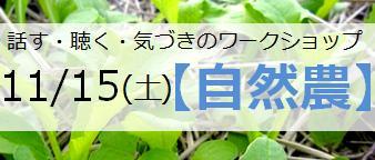 141115WS_ban.jpg