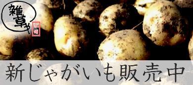 14potato_ban.jpg