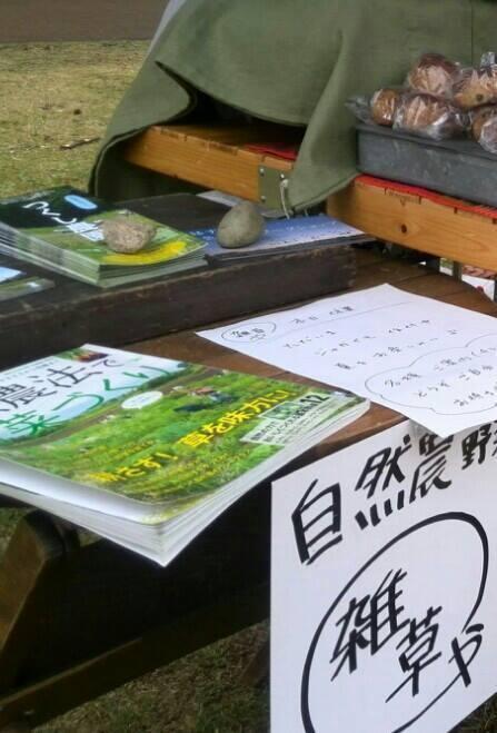 tukuichi-spring.jpg